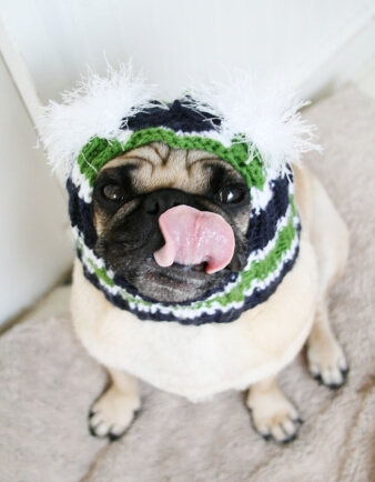 The Original Snuggly Pug Hat