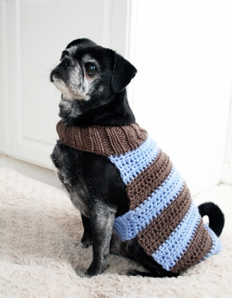 Custom Dog Sweater