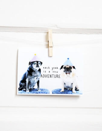 Adventure Pug Birthday Card
