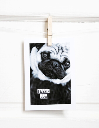 Pug Thank You Card
