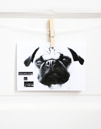 Thinking Of You Pug Greeting Card
