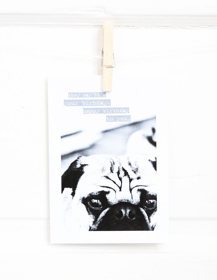 They Say It's Your Birthday Pug Greeting Card