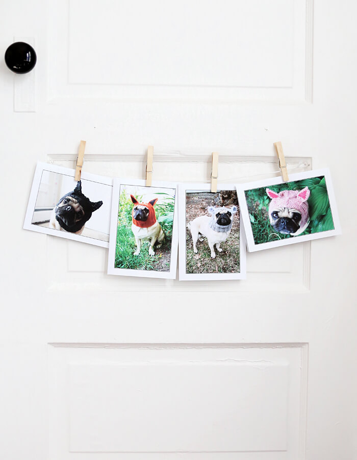 Pug Creature Greeting Cards