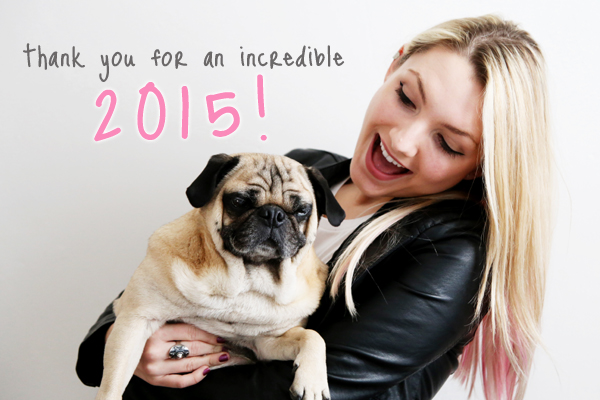 All You Need is Pug 2015