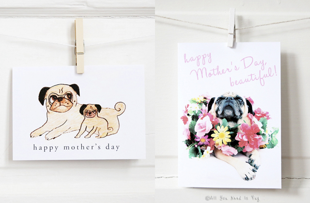 Pug Mother's Day Cards