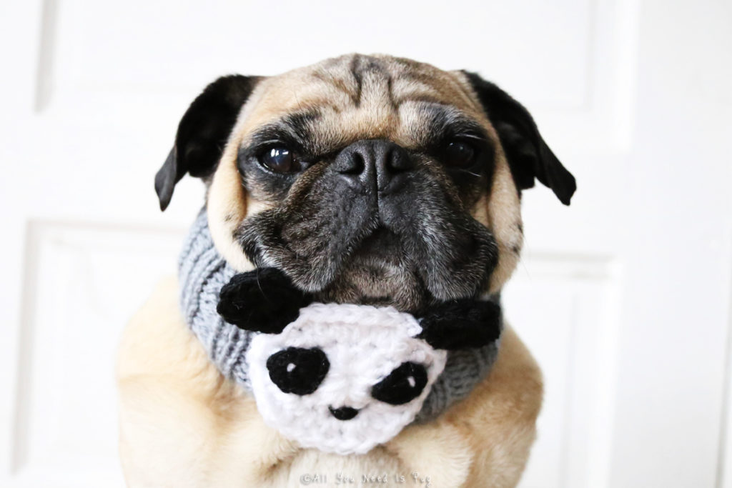 Panda Dog Neck Warmer